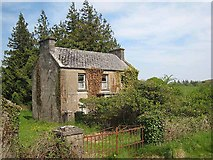 G8411 : Neglected house at Knockadrehid by Oliver Dixon
