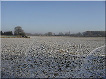 SP2504 : Snowy field at Kencot by andrew auger