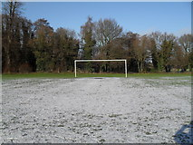 SU9948 : Tricky conditions for a keeper in the recreation ground in Shalford Road by Basher Eyre