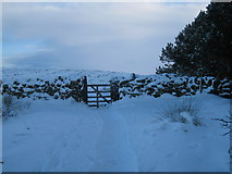 NZ5812 : The gate onto Newton Moor by Philip Barker