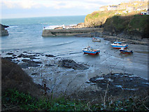 SW9980 : View of the Harbour from Roscarrock Hill, Port Isaac by Bill Henderson