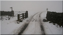 NY6511 : Linglow Hill by Peter McDermott
