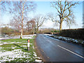 SP8421 : Road to Cublington at Badgers Oak Farm by John Firth