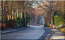 J3875 : The Circular Road, Belfast (4) by Albert Bridge