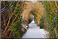 TF0645 : Footpath off Rauceby Banks - Sleaford by Mick Lobb