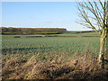 TL6352 : Upper Stour valley by Hugh Venables