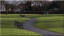 SX9265 : Seats in Cary Park by Derek Harper
