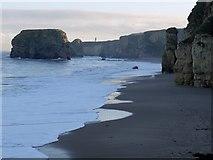 NZ3965 : Marsden Bay below the cliffs by Andrew Curtis