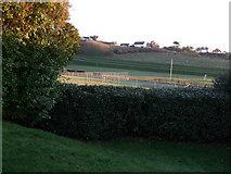 TQ3303 : Sports Ground - East Brighton Park by Paul Gillett