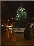 SO9496 : Bilston Tree by Gordon Griffiths