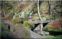 SD9628 : Hebble Hole Bridge, Colden by Dr Neil Clifton