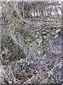 SU3788 : Brickwork by the canal by Bill Nicholls