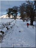 NS5379 : Snowy West Highland Way near Easter Carbeth by Alec MacKinnon