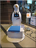 SJ3589 : Go Penguins in the Anglican Cathedral - Penny by John S Turner