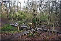 TQ6895 : Norsey Footbridge by Glyn Baker