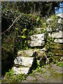 SW9558 : Old steps by St Dennis Church by Colin Park