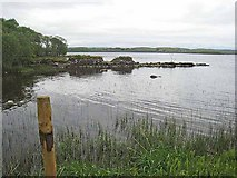 G8205 : West shore of Lough Key by Oliver Dixon