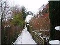 NZ2567 : Dilston Terrace by Philip Barker
