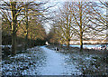 TM3696 : Path north of Hales Hall by Evelyn Simak
