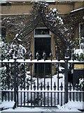 NT2572 : Garden gate, Thirlestane Road by kim traynor