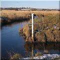 SN6863 : Water level gauge in the Afon Teifi by Rudi Winter