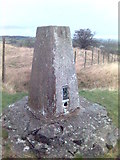 SK3455 : Trig Point at Crich War Memorial by Eamon Curry