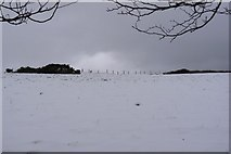 SS5345 : A snow covered  field next to Francis farm by Roger A Smith