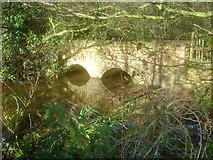 SK5451 : Bridge over the River Leen by Trevor Rickard