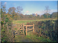 SK5451 : Kissing gate near Papplewick by Trevor Rickard