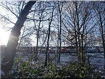 TQ2996 : Piccadilly Line train adjacent to Trent Park, London N14 by Christine Matthews