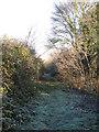TL6173 : Footpath to Moor Farm by Hugh Venables