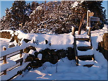 NZ0658 : Footpath Signs and Stiles at Apperley Bank by Clive Nicholson