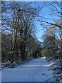 SP2874 : Kenilworth Greenway in the snow by E Gammie
