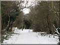 TQ4271 : Footpath from Elmstead to Chislehurst by Stephen Craven
