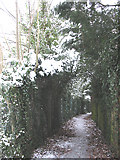 TQ4471 : Green arch on a footpath by Stephen Craven
