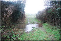 ST1337 : Ford off Halsway Lane by N Chadwick