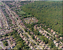 TQ8187 : Aerial view of Scrub Lane and Belfairs Nature Reserve by Edward Clack