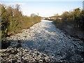 SJ4160 : Pancake ice on the River Dee by John S Turner