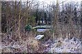 SU5595 : Footbridge over a ditch by the A415 by Steve Daniels