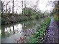 ST8259 : Kennet and Avon Canal, Bradford-on-Avon by Maigheach-gheal