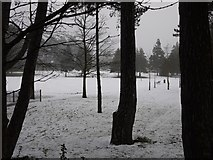 J3271 : Drumglass Park in the snow by Rossographer