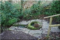 ST0642 : St Decuman's Holy Well by N Chadwick