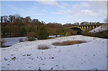 SD4964 : River Lune downstream of M6 bridge by Ian Taylor