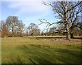 SP2555 : Charlecote Deer Park from the Stratford Road by David P Howard