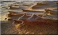 NK0024 : Newburgh: sand patterns on Forvie Sands by Martyn Gorman