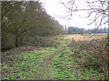 TG2407 : Footpath west of Whitlingham Lane by Evelyn Simak