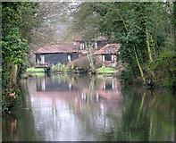 TG2407 : Reflections in the River Yare by Evelyn Simak