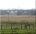 TG2205 : The Harford Rail Viaduct viewed from Stoke Road by Evelyn Simak