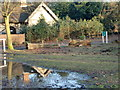 TQ2897 : Trent Park Reflection by Christine Matthews