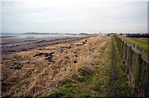 NS3229 : Path by Royal Troon Golf Club by Gordon Brown